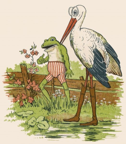 A baby frog is delivered by the stork