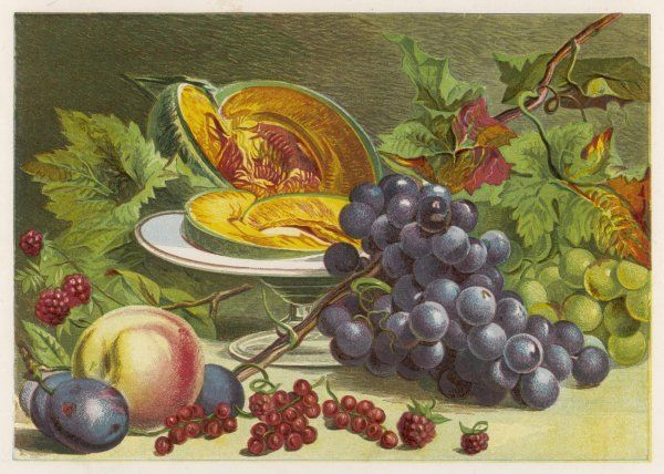 A sliced melon, a peach, a large bunch of grapes, redcurrants and raspberries, to represent the months of July and August
