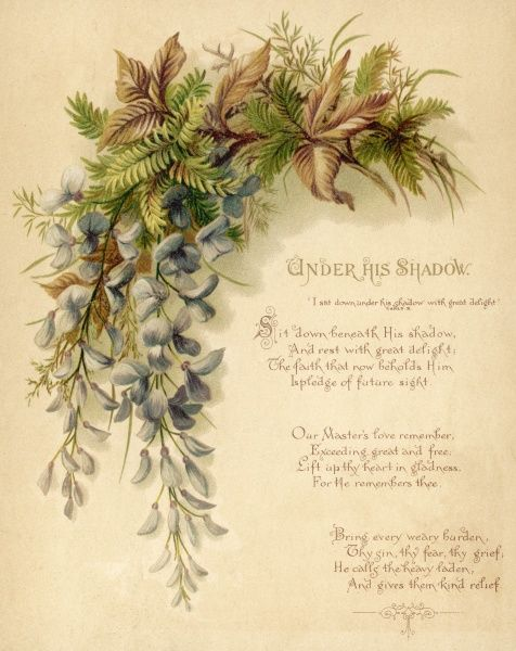 A mixture of leaves, ferns & flowers including wisteria used as a visual accompaniment to a prayer
