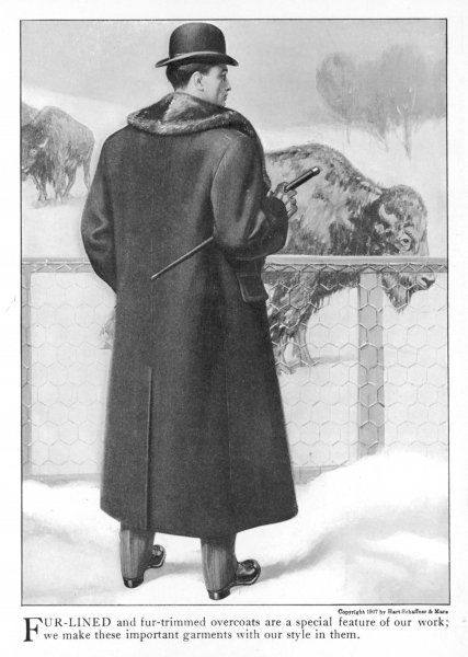 Back view of an American fur- line & fur-trimmed overcoat with pocket flaps & back vent. The model poses against some bison who presumably obligingly supplied the fur?