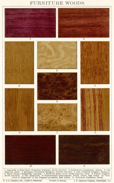 Various types of furniture wood including mahogany, ash, walnut and rosewood