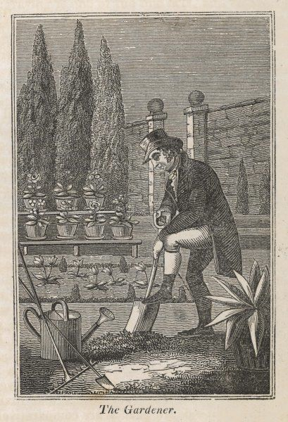A gardener digging over his garden in preparation for planting new plants