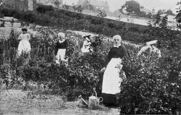 Inmates gardening at the Southern Counties Inebriates Reformatory at Lewes, Sussex
