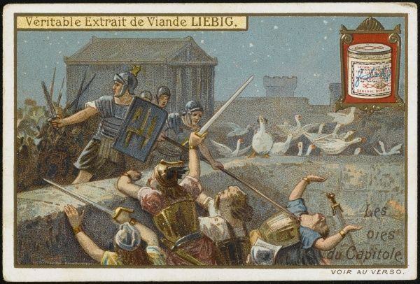 Cackling geese on the Capitol, Rome, alert the city to the approach of Brennus and his Gauls