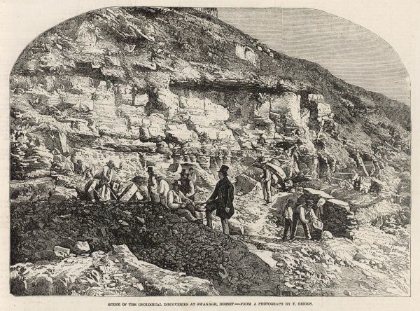 Labourers and geologists working at a site in Swanage, Dorset, where geological discoveries were made