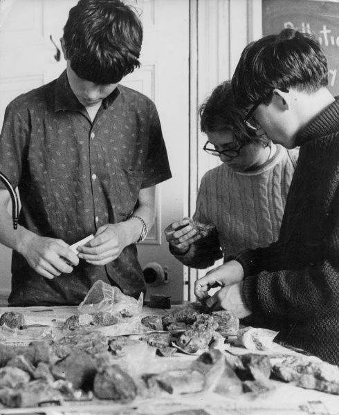 Sixth form 'A' level Geology students, sorting through their 'booty' after a day on nearby May Hill. The Wilderness Field Study Centre, Britain. Date: early 1970s