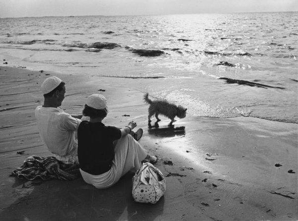 German couple on a beach holiday with their pet dog in the 1930s
