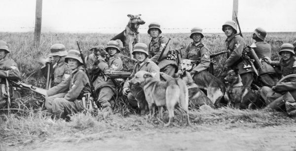 The regimental signals platoon with their messenger dog during German military manouevres in 1932 Date: 1932