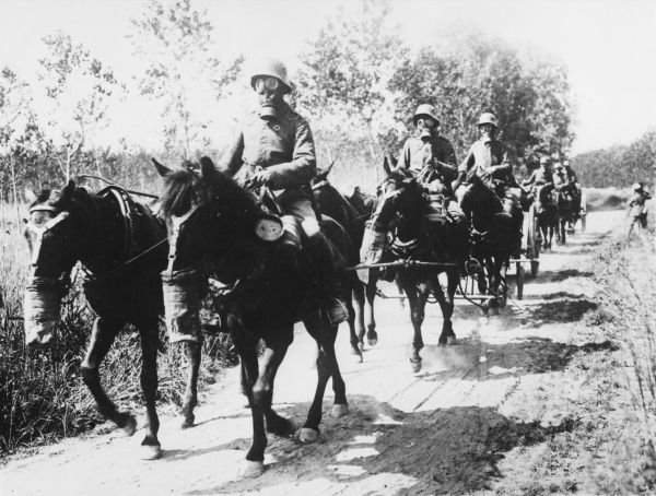 German transport drivers and horses wearing gas masks during the advance on Soissons at the Third Battle of the Aisne during World War I