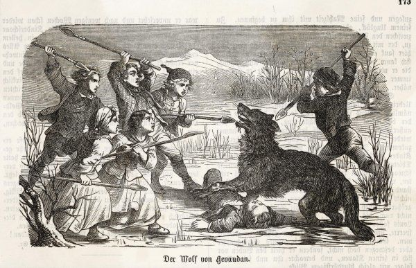 'DER WOLF VON GEVAUDAN' Children defend one of their comrades against a creature which may or may not have been a wolf
