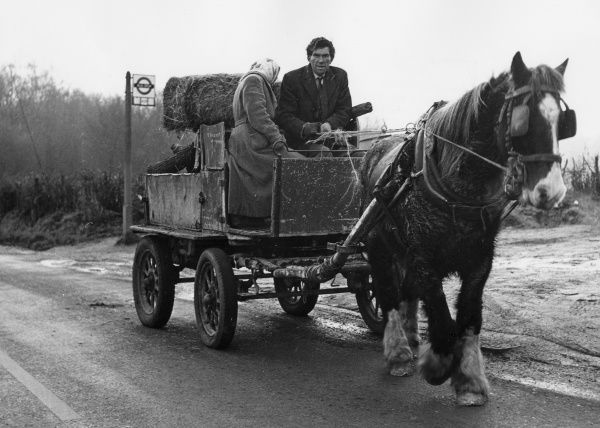 A middle-aged gipsy couple riding along a country road on their horse-drawn cart. A London Transport bus stop can be seen in the background