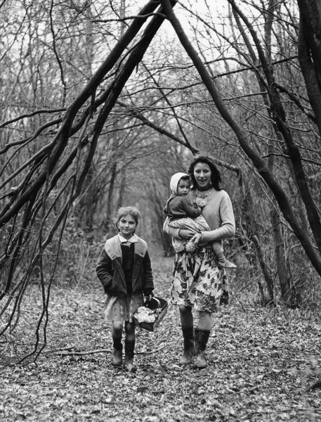 A gipsy mother and two daughters, members of the Vincent family, walking through a wood in the Newdigate area of Charlwood, Surrey, with a young man in the background