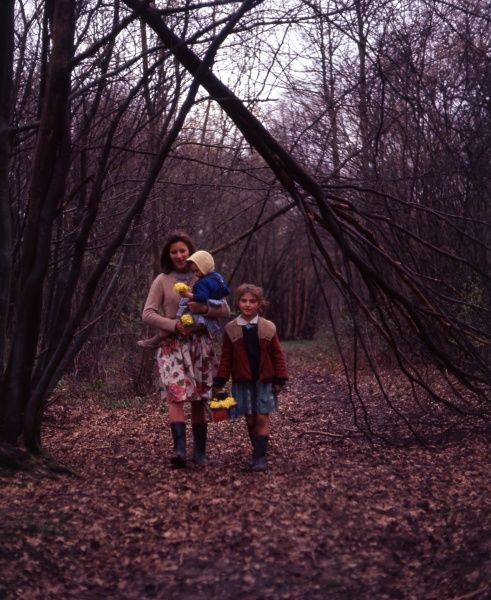A gipsy mother and two daughters, members of the Vincent family, walking through a wood in the Newdigate area of Charlwood, Surrey. They are wearing colourful clothes and carrying yellow flowers