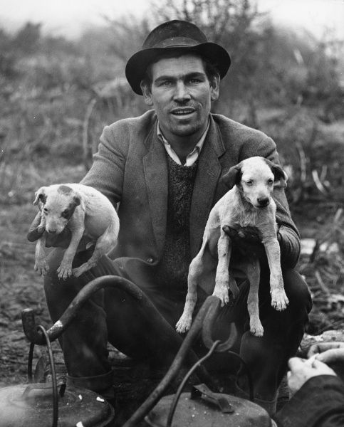 A handsome gipsy man holds a very young puppy in each hand, worryingly close to some cooking pots