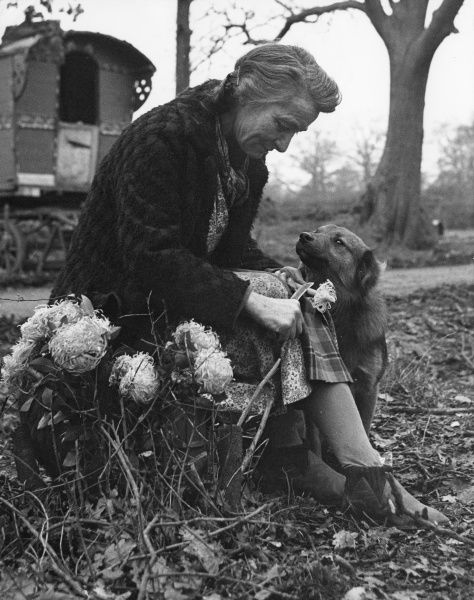 An old gipsy woman chops leaves off flower stalks, possibly tidying them up so that she can sell them. Her dog looks soulfully into her eyes, seeking her attention