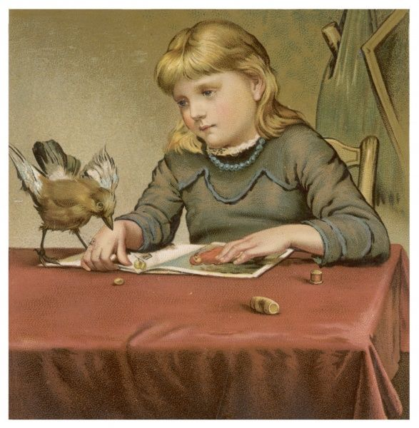 A girl watches a bird who has alighted on her table while she reads a picture-book