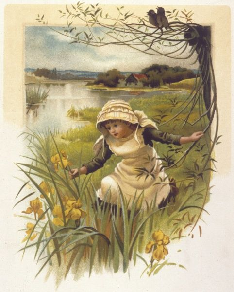 A little girl in a meadow near a stream admires some yellow irises