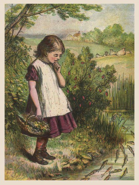 A little girl wearing a white smock stands and watches a shoal of fish in a brook