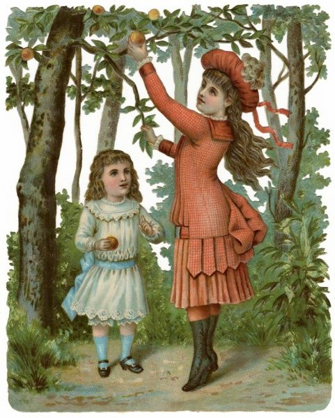 Two children picking apples