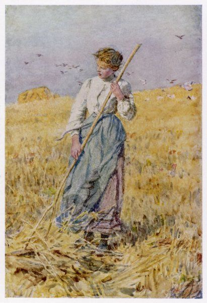 A country girl gleans after the oat harvest