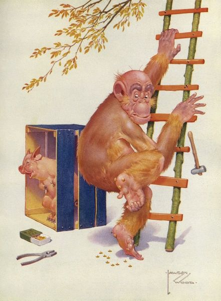 Humorous illustration by Lawson Wood featuring his orang utan character, Granpop, descending a ladder only to stand painfully on some brass tacks. His porcine companion seems to find this hilarious. Date: 1934