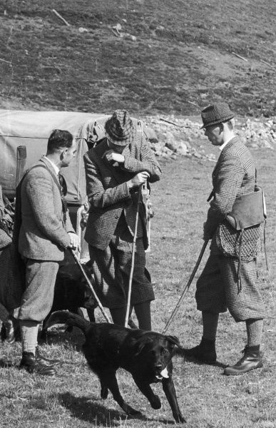 Three men, wearing patterned tweed outfits, confer before starting a grouse shoot