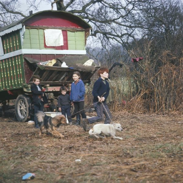 Four Gypsy children and their dogs in front of the brightly painted family caravan at an encampment in Surrey