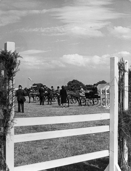 The 'Hackney' Class line-up at a Horse Show, the Wirral, Merseyside, England. Date: 1950s