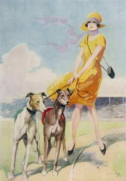 A glamorous looking young woman in a yellow dress and hat walks her champion greyhounds around the track before a race at a greyhound racing stadium