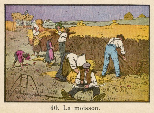 Barefoot & in sabots, French farmhands make hay while the sun shines. A little boy bearing a big jug brings a much needed drink to the workers