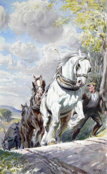 Heavy horses pull a Timber Wagon uphill. Painting by Raymond Sheppard