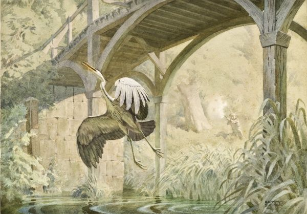 A Heron takes off from a reedbed alongside a stream under a wooden footbridge. Watercolour painting by Raymond Sheppard