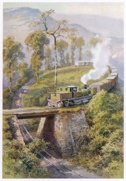 During their mountainous run, trains on the Darjeeling- Himalaya Line must negotiate 'Agony Point' which requires them to make a tight loop to cross their own track