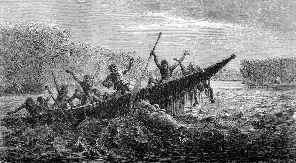 Engraving showing a female hippopotamus attacking a large canoe, South Africa, c.1857. Apparently, the hippopotamus had been robbed of her offspring and decided to capsize the canoe in retaliation