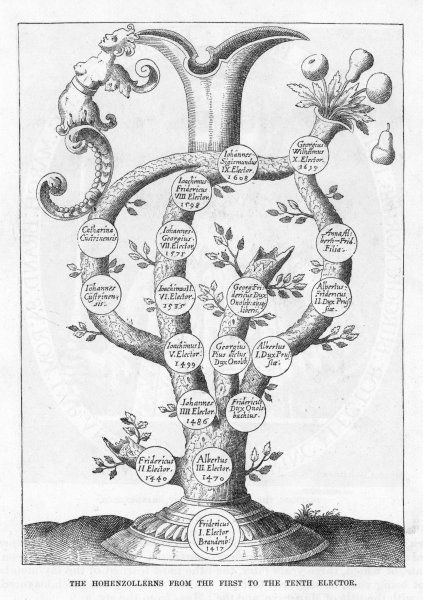 Family tree of the Hohenzollern family, commencing (at the roots) with Friedrich I elector of Brandenburg