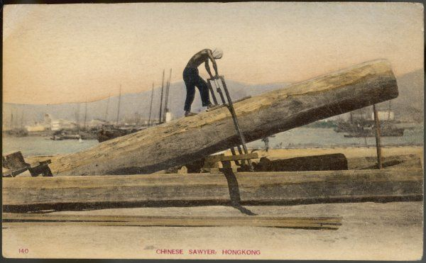 A Chinese sawyer cuts a log in Hong Kong. He uses his saw sideways to minimise the risk of splitting