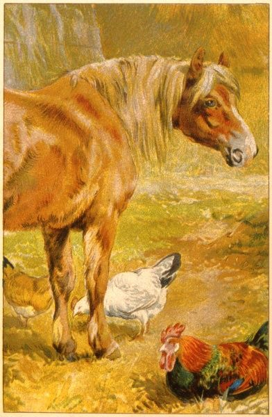 A horse surrounded by chickens