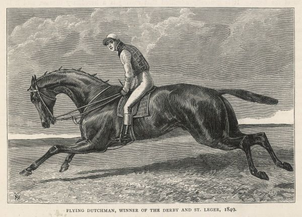 Thoroughbred racehorse Flying Dutchman who won the Derby, the St Leger and the Gold Cup at Ascot, amongst other races