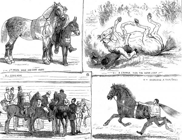 Engraving showing four scenes at the Alexandra Park Horse Show of 1873. Clockwise from top left: 1st Prize Mule and Cart Mare; a Faller at the Water Jump; Exercising a thoroughbred; a group of riders going home
