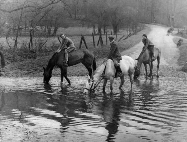 Horses having a welcome drink at Barwick Ford on the River Rib, Hertfordshire, England. Date: 1930s