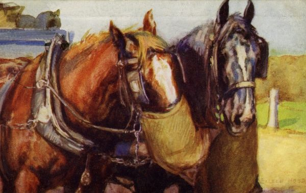 Horses feeding. Artist: Eileen Hood. Watercolour of carthorses feeding from nosebags Date: circa 1922