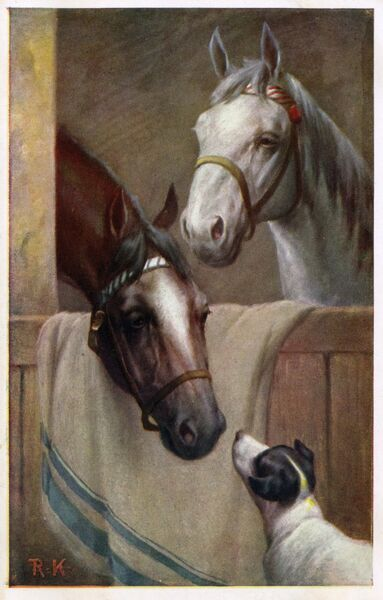 Two Horses (one brown and one white) in the stable with a small terrier. Date: 1910s