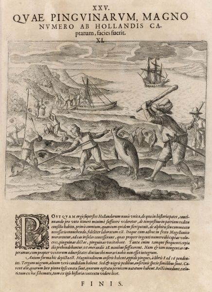 Dutch sailors hunting penguin in the southern seas