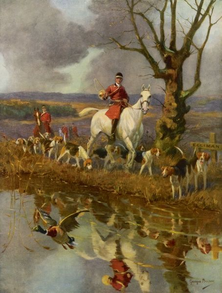 Huntsman riding with hounds along a riverbank
