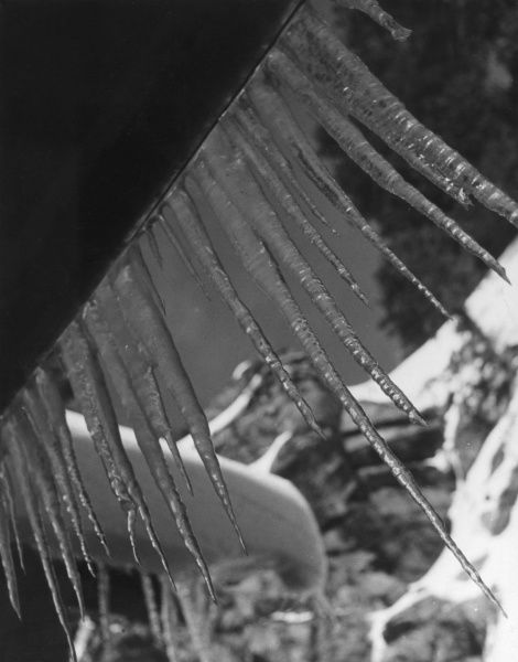 A study of icicles. Date: 1930s