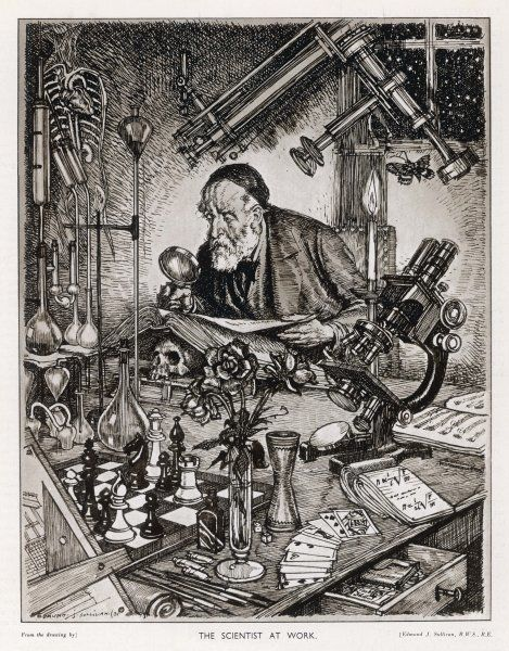 The ideal scientist - interested in the old as well as the new, anatomy as well as astronomy, the laws of chance and of mathematics, the skill of chess, the hues of a rose