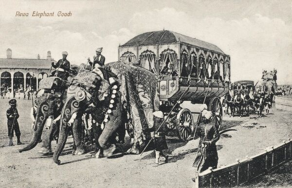 India - Rewa Elephant Coach - a very grandly-adorned wagon, pulled by a pair of highly-decorated elephants. Used to transport Maharajahs
