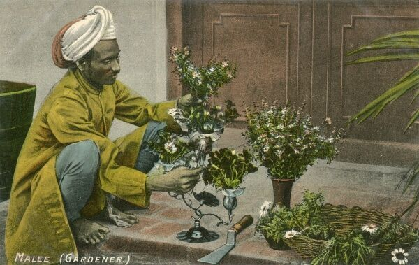 Indian Gardener working on the doorstep to a lavish residence arranging a variety of floral blooms in a variety of pots
