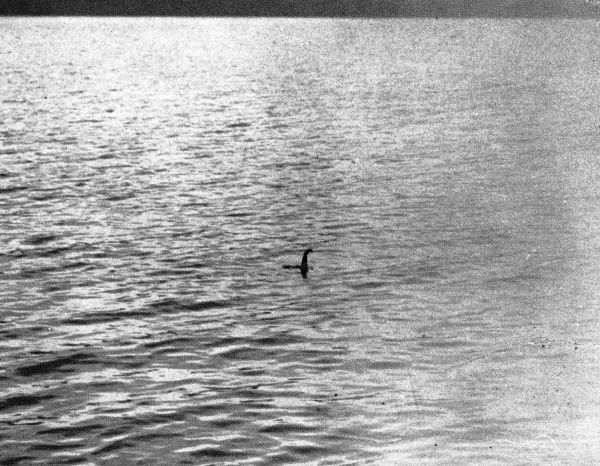 The Loch Ness Monster? A photograph taken by Mr R. K Wilson, a London surgeon, after noticing an object moving in Loch Ness