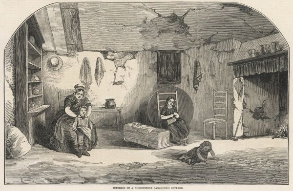 Interior view of a peasant's cottage in Dorset in 1846, accompanying an article reporting on the poverty and squalor of some villages in the county. The interior shows bare, peeling walls, few possessions save a rudimentary dresser, a few tankards